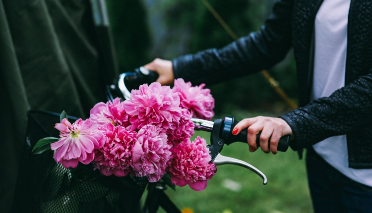 kaboompics_Woman holding a bicycle with beautiful pink flowers in the basket