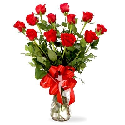 12-Red-Roses-Bunch