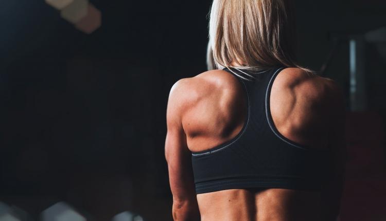 back-body-bodybuilding-28061